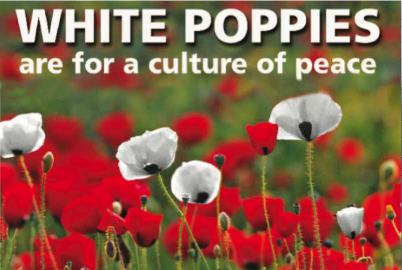 White Poppies are for a culture of peace